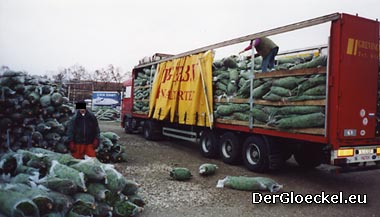 Abenteuer Großhandelsumschlagplatz für Weihnachtsbäume