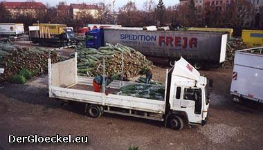 Saisonarbeit - arbeiten im Weihnachtsbaumverkauf