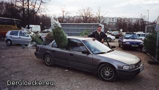 Transport von Weihnachtsbäumen