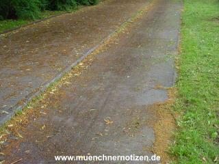 ein Radweg nach Tags zuvor erfolgtem Niederschlag