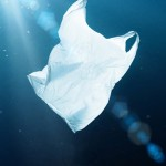 The Majestic Plastic Bag auf der Europaen Outdoor Film Tour 11/12